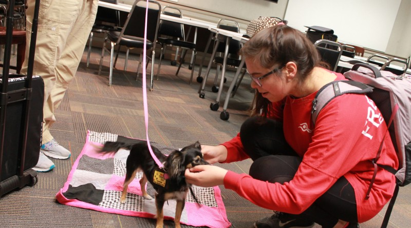 A student pets a dog last semester in the Counseling Center on East Campus. The department plans on expanding its West Campus office by the start of the fall semester.